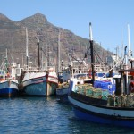 Hout Bay Day Tour